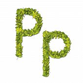 Leaf Font P