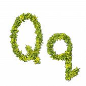 picture of storybook  - Leafy storybook font depicting a letter Q in upper and lower case - JPG