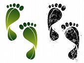 picture of carbon-footprint  - Set of ecological and carbon footprints - JPG