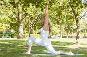 Beautiful pony tailed woman stretching in a yoga pose in a park