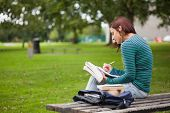Serious casual student sitting on bench taking notes on campus at college