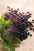 image of elderberry  - Fresh elderberry on vintage wooden background - JPG