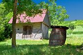 Wooden Cottage And Barrel In Vineyard