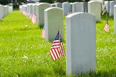 picture of headstones  - Arlington National Cemetery with a flag next to each headstone during Memorial day  - JPG