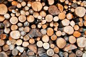 picture of woodstock  - Background of cut wood logs stacked in a pile - JPG