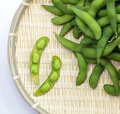 picture of nibbling  - edamame nibbles - JPG