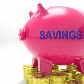 Savings Piggy Bank Means Spare Funds And Bank Account