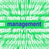 Management Word Shows Authority Administration And Governing