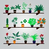 home houseplants and flowers in pot on the shelf eps10