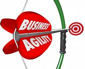Business Agility Bow Arrow Target Fast Action Change Adaptation