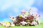 Composition with Easter eggs and blooming branches in glass jar and decorative nest, on color wooden