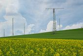 Transmitter Tower Above A Blooming Rapeseed Field