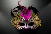 Carnival mask with pink feather on dark background