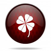 four-leaf clover red glossy web icon on white background