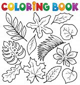 Coloring book leaves theme 1 - eps10 vector illustration.