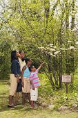 stock photo of nuclear family  - African family pointing at tree on nature trail - JPG