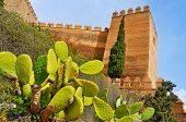 a view of the walls of the Alcazaba of Almeria, in Almeria, Spain