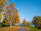 Park alley in autumn colors with bridge over the river in the background, Rovaniemi, Finland