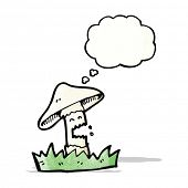 pic of magical-mushroom  - cartoon magic mushroom character - JPG