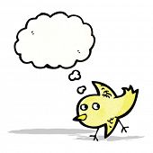 cartoon chick with thought bubble