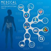 foto of gastrointestinal  - Medical and healthcare infographic - JPG
