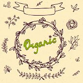 Set Of Badges, Labels, Logo, Floral Elements, Wreaths And Laurels