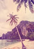 Vintage Retro Stylized Tropical Beach With Palm Trees.
