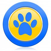 foot blue yellow icon