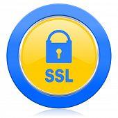 ssl blue yellow icon