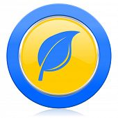 nature blue yellow icon leaf sign