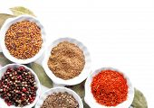 Different kinds of spices in ceramics bowls isolated on white