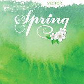 Watercolor texture background.Spring