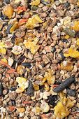 Fruity Natural Sportive  Muesli Background. For Horse.
