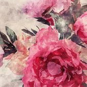 art grunge floral warm sepia vintage watercolor background with purple, tea and pink roses and peonies