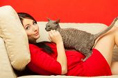 Pregnant Woman On Sofa Playing With Cat