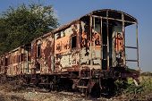 Old Train Covery By Plant And Sky