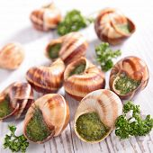 french gastronomie,escargot