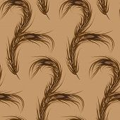 Vector wallpaper seamless brown. Peacock Feather.  Fashionable d