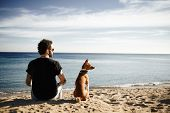 Caucasian Man In Sunglasses Sitting In Beach With Friend's Dog Breed Basenji And Looking Into The Di