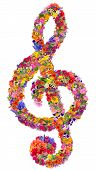 stock photo of clefs  - Abstract sign of a musical treble clef made from flowers - JPG