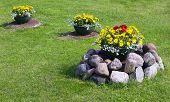 Flowerpots On Lawn