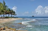 pic of caribbean  - Gros Islet in st lucia in caribbean island - JPG