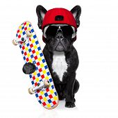stock photo of bulldog  - french bulldog dog as a skater with red cap and skateboard isolated on white background - JPG