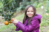 Child On Orange Farm