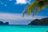 Coconut Getaway Island Lagoon