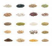 seeds varied