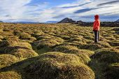 Hiker in an old moss-covered lava field at Krafla volcanic area in Iceland