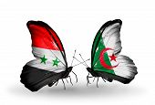 foto of algeria  - Two butterflies with flags on wings as symbol of relations Syria and Algeria - JPG