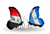 Two Butterflies With Flags On Wings As Symbol Of Relations Syria And Guatemala