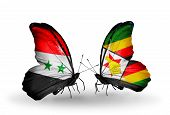 Two Butterflies With Flags On Wings As Symbol Of Relations Syria And Zimbabwe